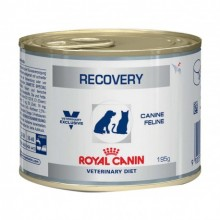 Royal Canin Veterinary Diet Dog/Cat Recovery boîte