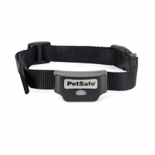 Casapets-PetSafe-collier-PIG19-16414