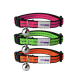 Casapets-Vetopop-collier-chat-fluo-gamme