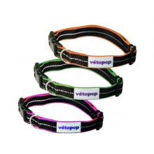 Collier Fluorescent VétoPop chien