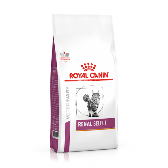 Casapets-Royal-canin-cat-renal-select-dry