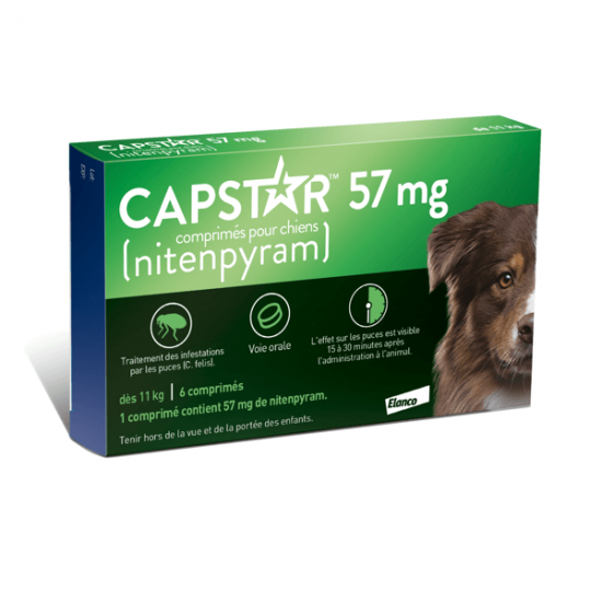 Casapets-Elanco-capstar-57mg