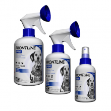 Frontline Spray Solution externe