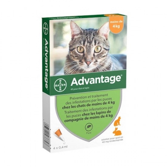 Casapets-Bayer-advantage-40-x4